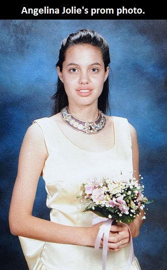 funny-picture-angelina-jolie-pro-photo