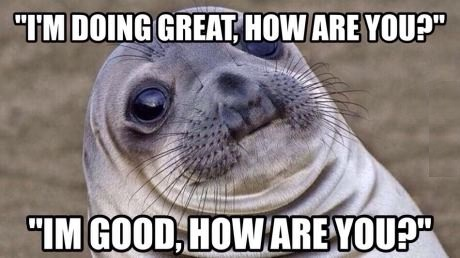 funny-picture-awkward-seal-conversation