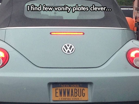 funny-picture-car-license-plate-bug
