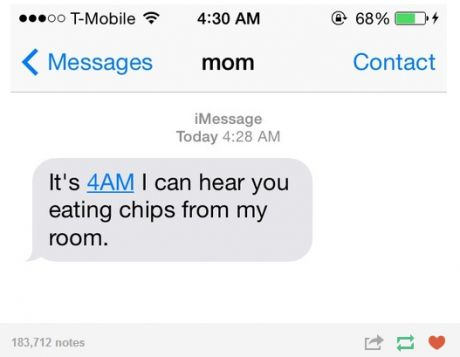 funny-picture-chips-night-mom