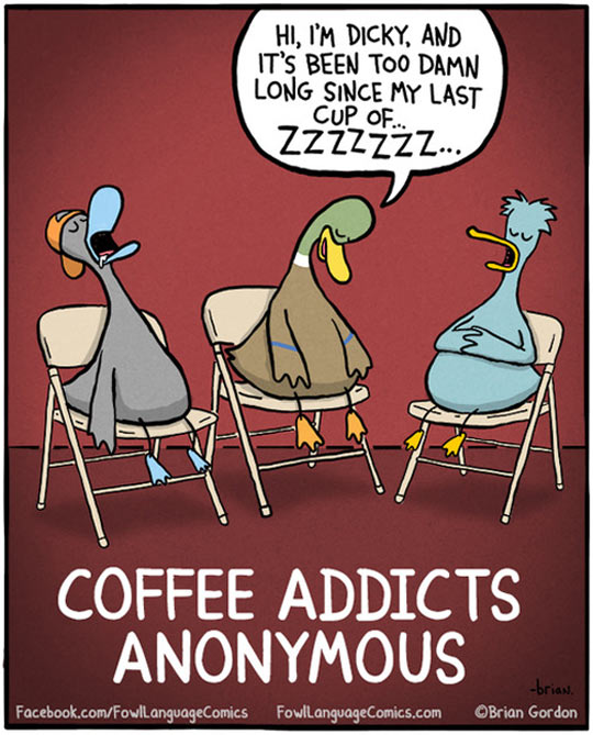 funny-picture-ducks-comic-coffee-addicts