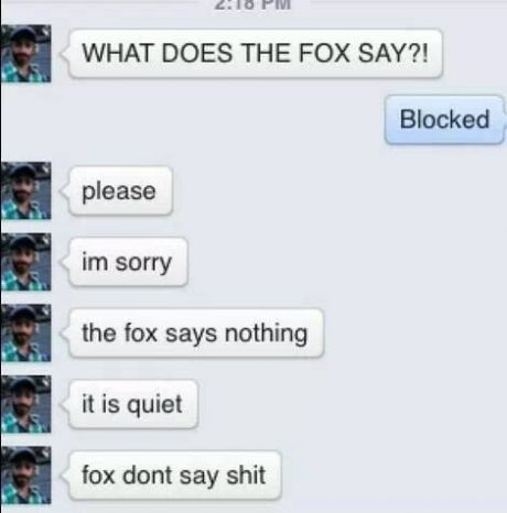 funny-picture-fox-say-text
