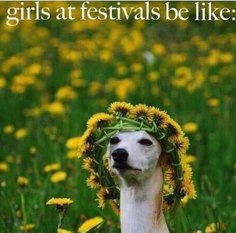 funny-picture-girl-festivals