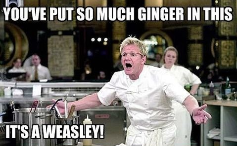 funny-picture-gordon-ramsay-ginger