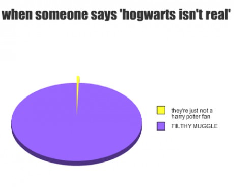 funny-picture-harry-potter-fan-hogwarts