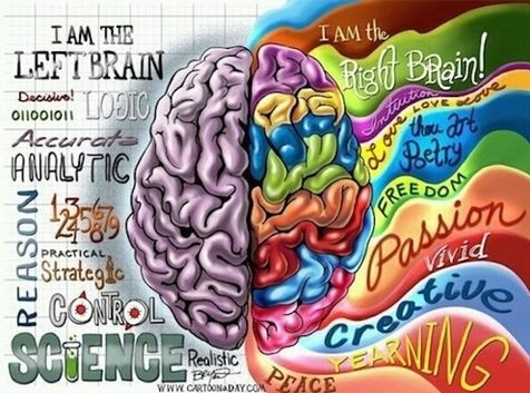 funny-picture-inside-brain