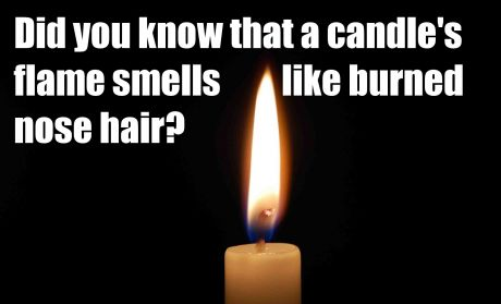 funny-picture-nose-hair-candle
