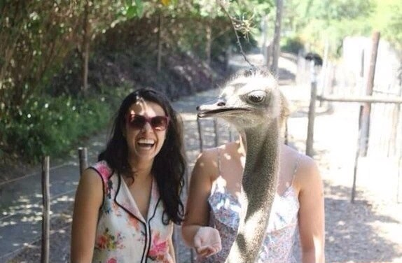 funny-picture-photobmb-ostrich