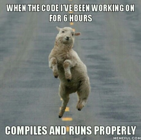 funny-picture-programmer-joy