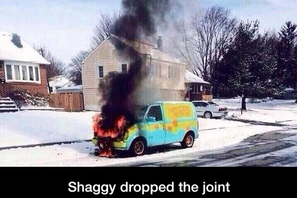 funny-picture-shaggy-joiny