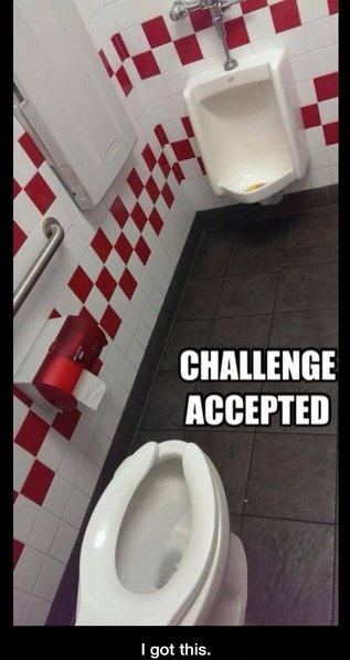 funny-picture-toilet-challenge