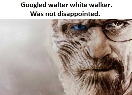 funny-picture-walter-white-walker