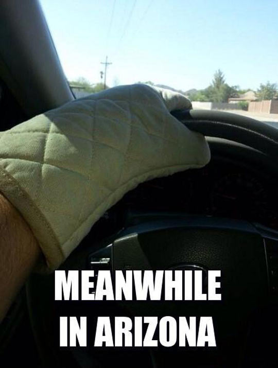 funny-picture-Arizona-cooking-glove-car
