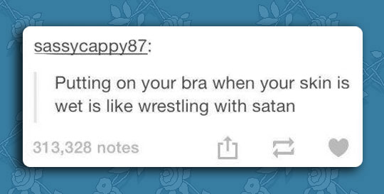 funny-picture-bra-wet-wrestling-comment