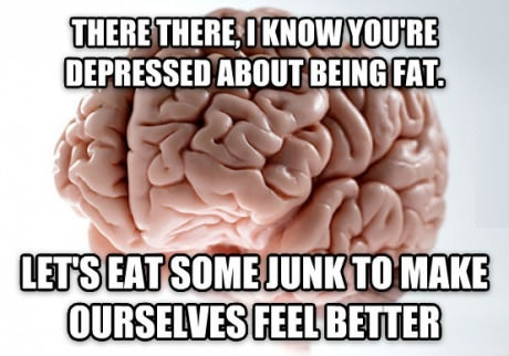 funny-picture-brain-food
