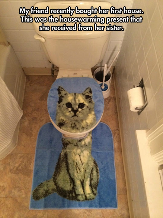 funny-picture-cat-carpet-toilet-cover