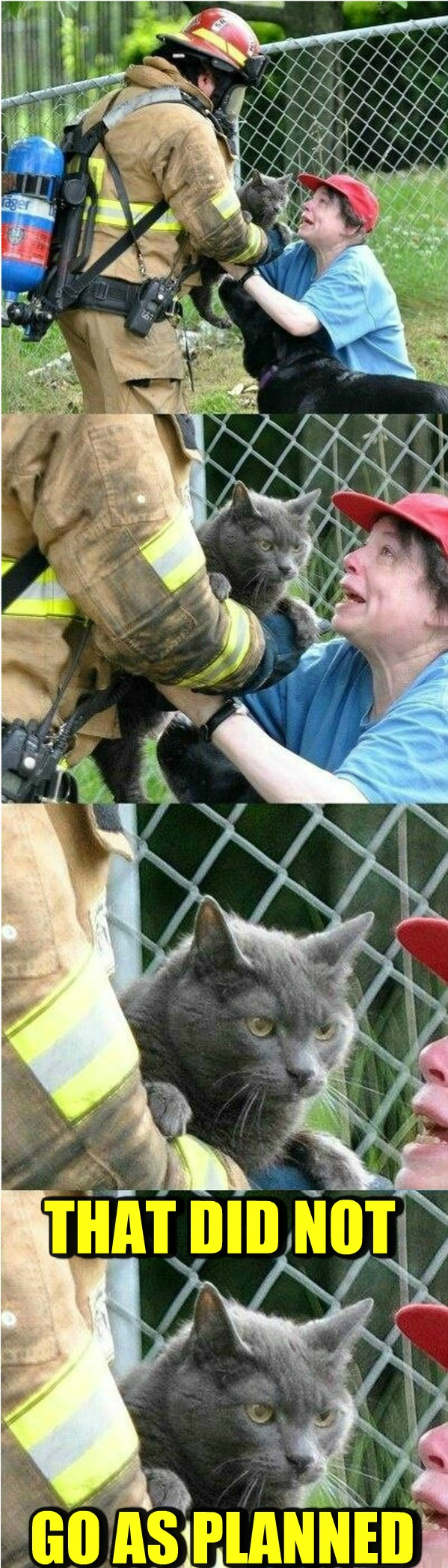 funny-picture-cat-evil-fire