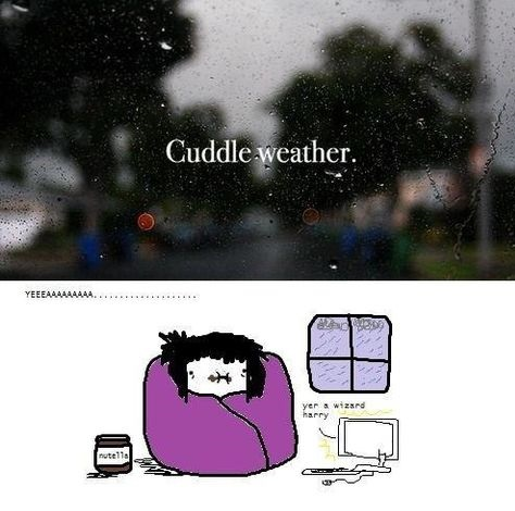 funny-picture-cuddle-weather