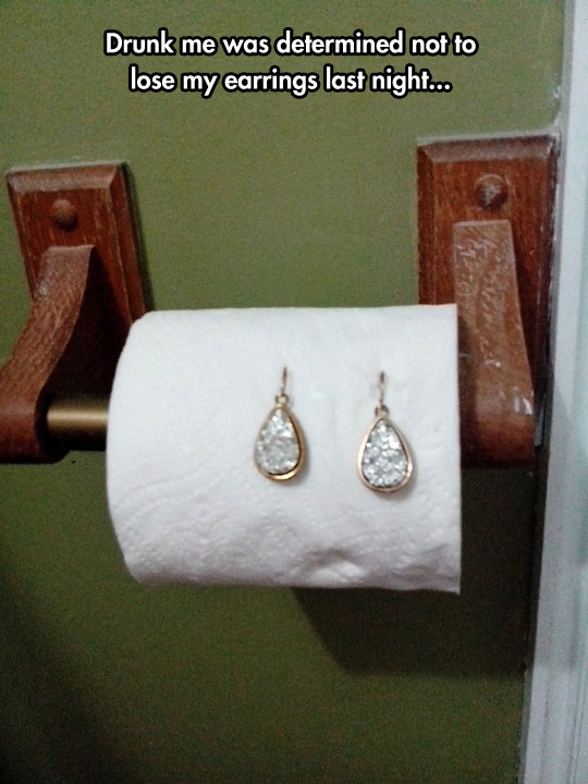 funny-picture-earrings-toilet-paper
