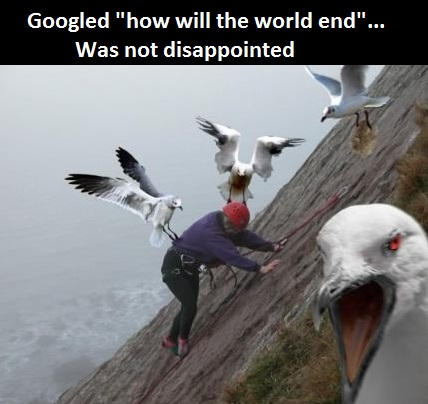 funny-picture-end-of-the-world
