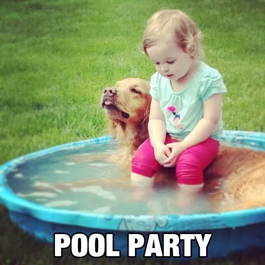 funny-picture-girl-dog-pool-tiny