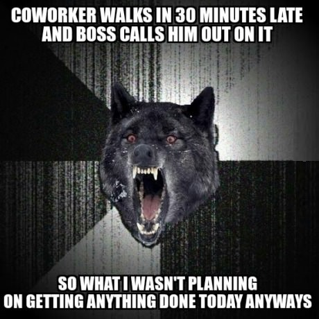 funny-picture-insanity-wolf-late-work