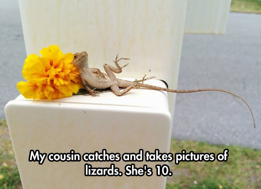 funny-picture-lizard-flower-posing