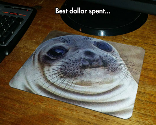 funny-picture-mouse-pad-seal-cheap