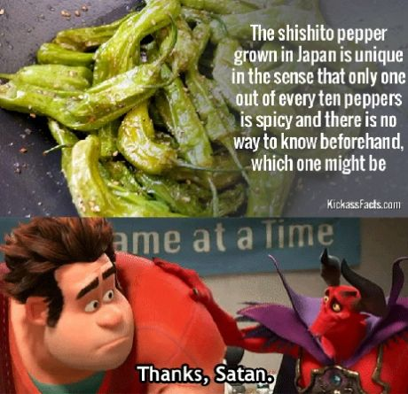 funny-picture-pepper-japan-troll
