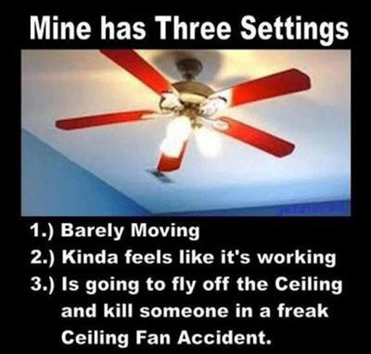 funny-picture-roof-fan-three-settings