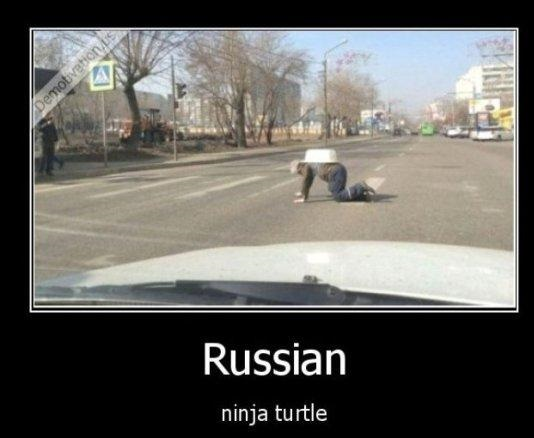 funny-picture-russian-ninja-turtle