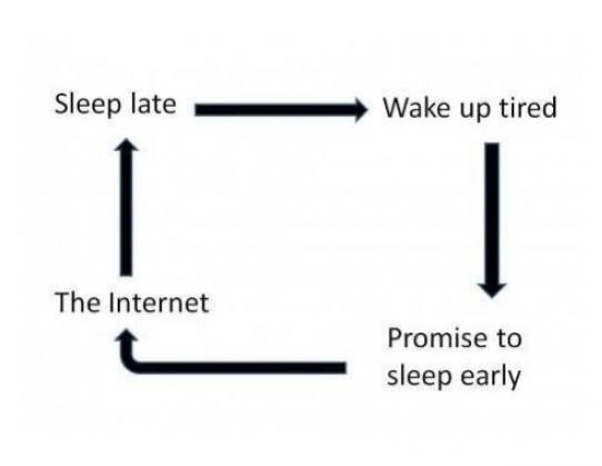 funny-picture-sleep-internet
