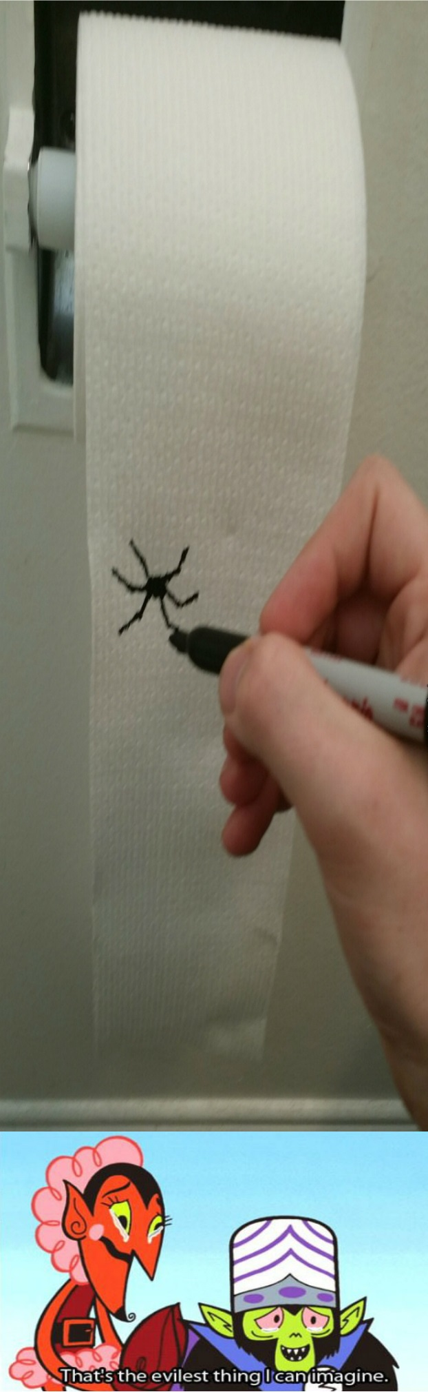 funny-picture-toilet-paper-troll-spider