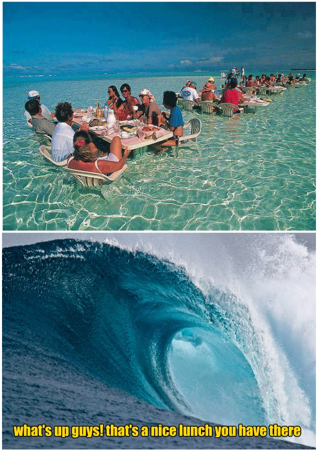 funny-picture-water-lunch