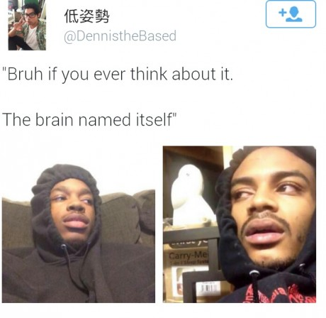 funny-brain-name-itself