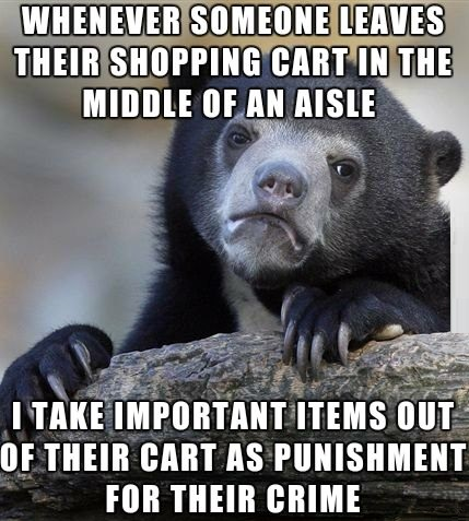 funny-confession-bear-shopping-cart