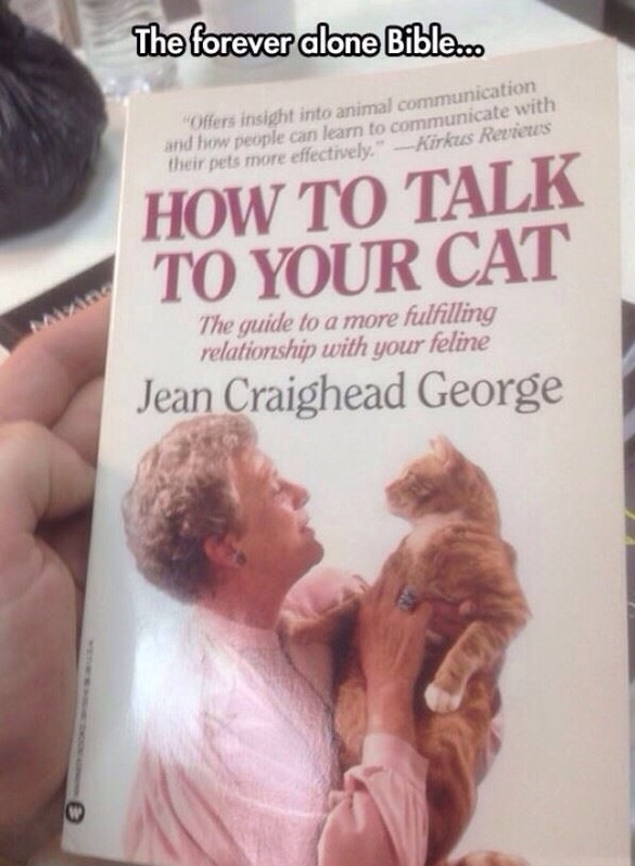 funny-forever-alone-cat-book