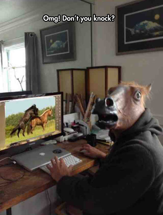 funny-horse-watching-video-computer