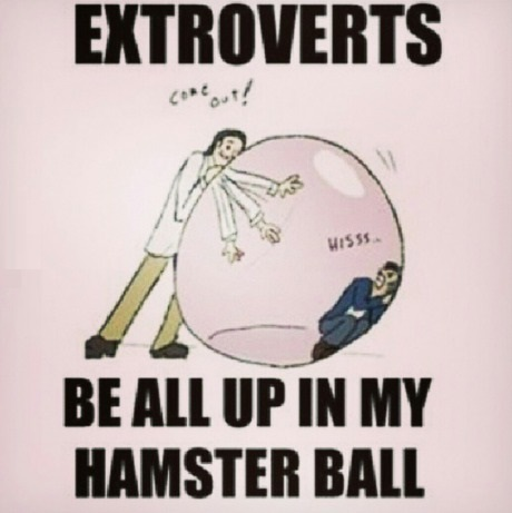 funny-comics-hamster-introverts