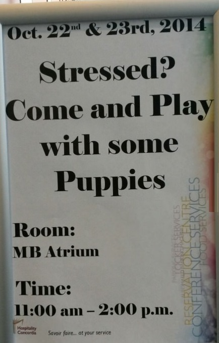 funny-stress-puppies-sign