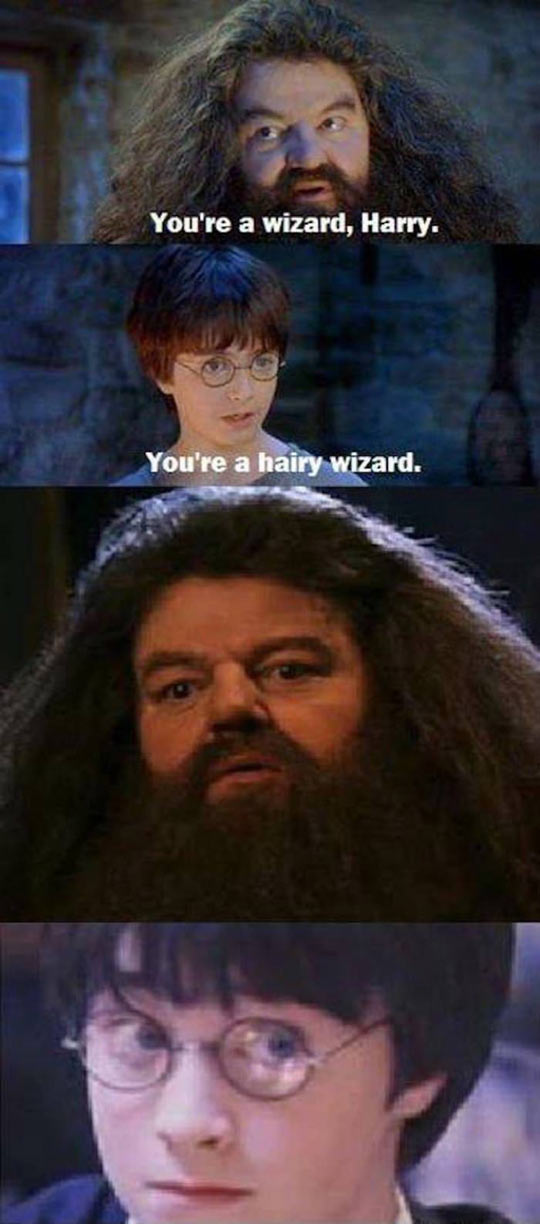 funny-Harry-Potter-wizard-Hagrid