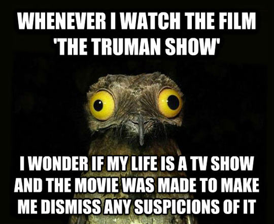 funny-Truman-Show-movie-real
