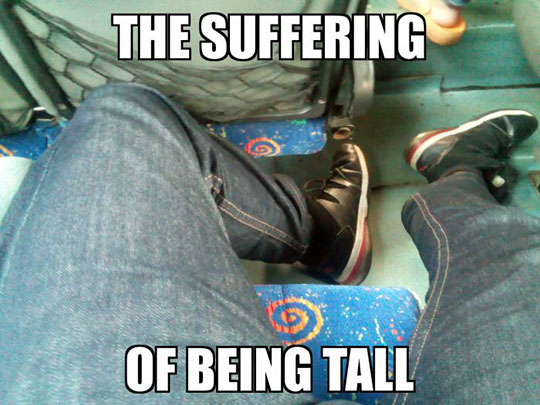 funny-bus-little-space-legs
