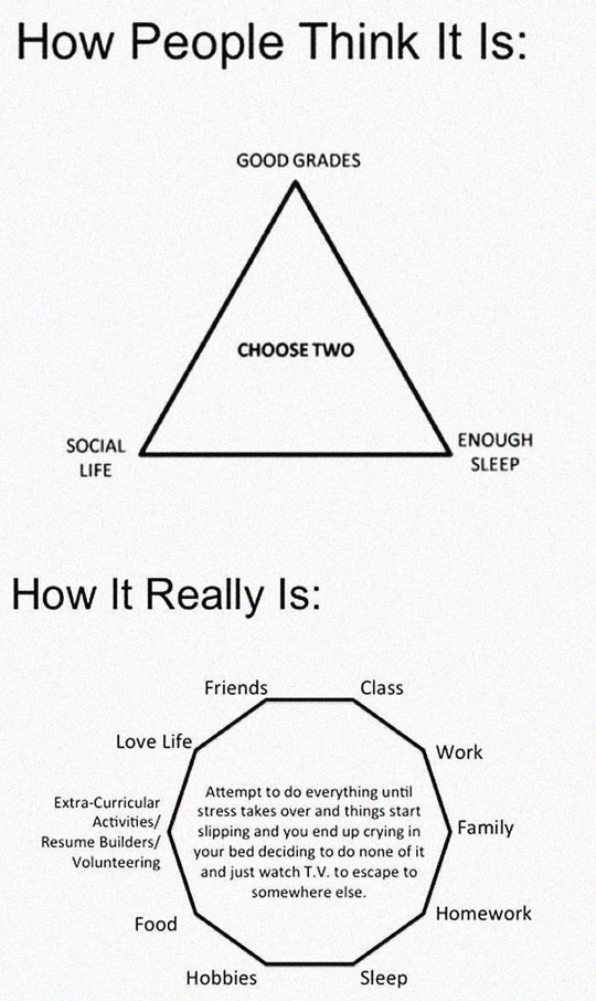 funny-college-life-chart-complex
