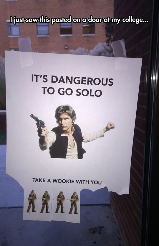 funny-Han-Solo-Wookie-college-door