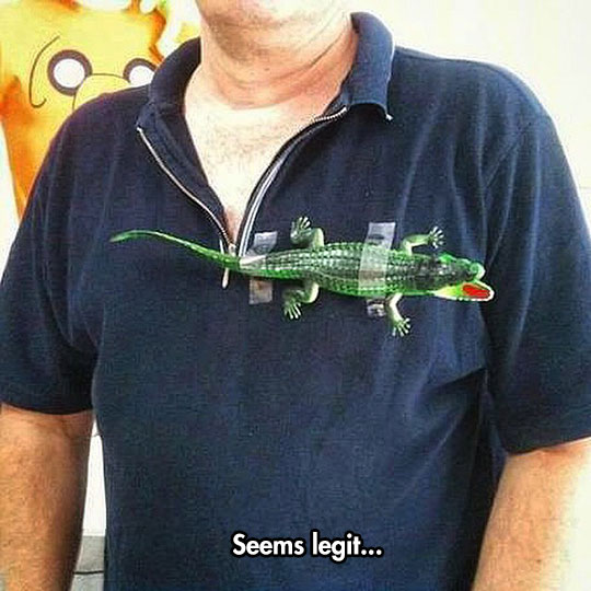 funny-alligator-taped-shirt-Lacoste