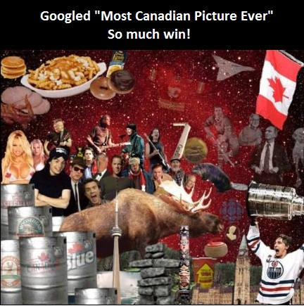 funny-canadian-picture-flag-moose