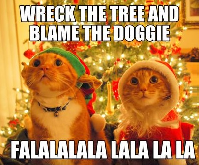 funny-cats-christmas-tree