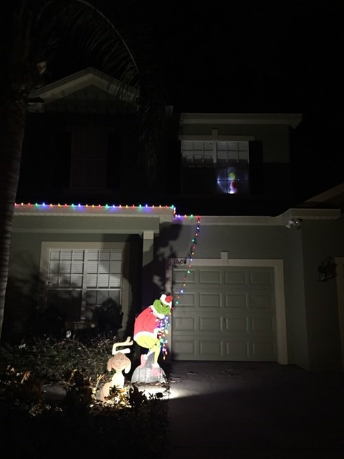 funny-christmas-decoration-grinch