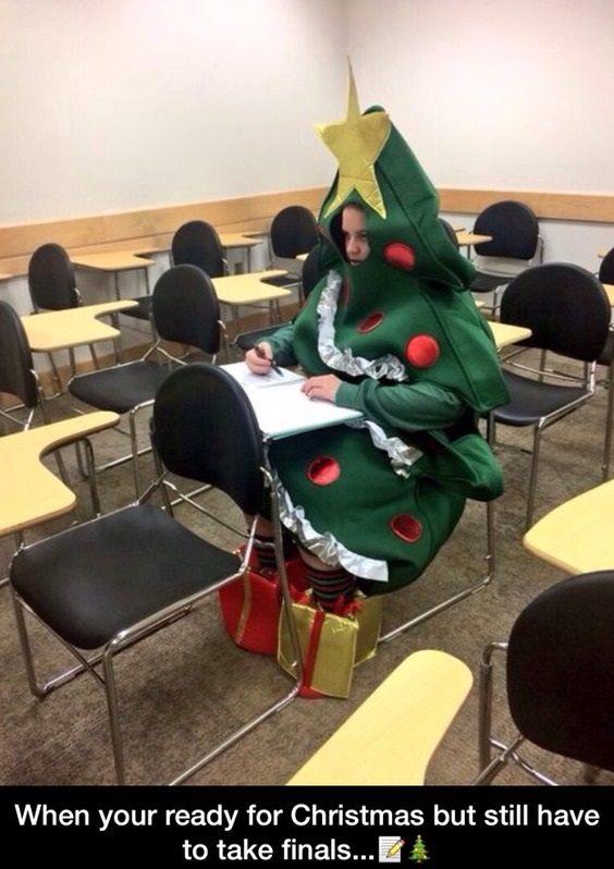 funny-christmas-finals-costume